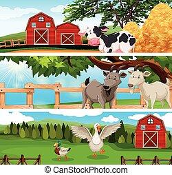 tanya, farmland, állatok