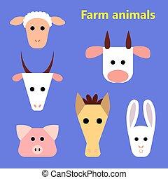 tanya, gazdag koncentrátum, állhatatos, állatok