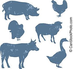 tanya, körvonal, vektor, állatok