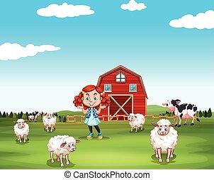 tanya, kevés, sheeps, leány