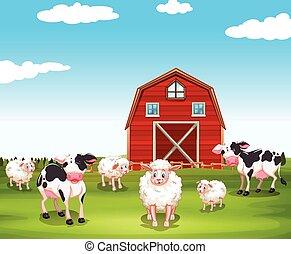 tanya, lidércek, sheeps