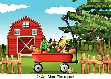 tanya, növényi