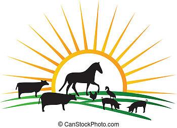 tanya, nap, körvonal, vektor, állat