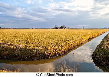 tanya, napnyugta, előbb, holland, folyó