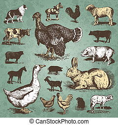 tanya, szüret, állhatatos, állatok, (vector)