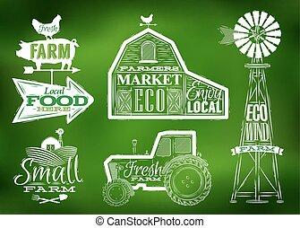 tanya, szüret, zöld