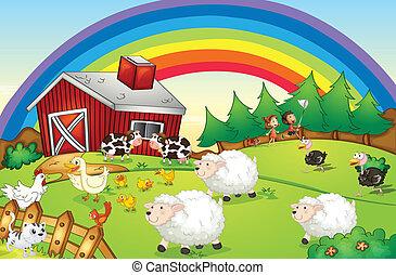tanya, szivárvány, ég, állatok, sok