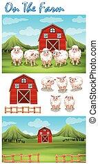 tanya, téma, sheeps