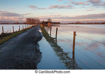 tanya, víz, elárasztott, út, holland, folyó, ijssel