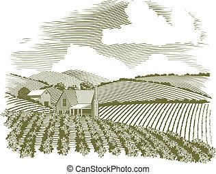tanya, vidéki, fametszet, épület
