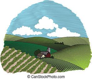 tanya, vidéki, könyvcímrajz, színhely, szín