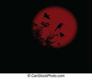 tele, fa, hold, éjszaka, piros, holló