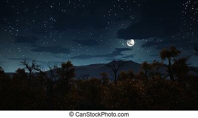 tele, kísérteties, felett, hold, 4k, éjszaka, erdő