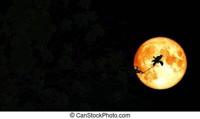 tele, múlás, emelkedik, hold, hát, fa, vér, idő, éjszaka, hódprém, elágazik, ég