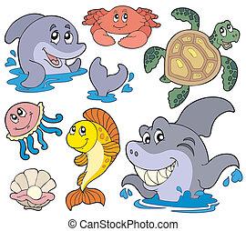 tengeri, állhatatos, állatok