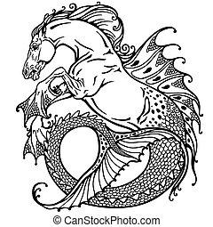 tengeri ló, fehér, fekete