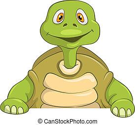 tengeri teknős, furcsa