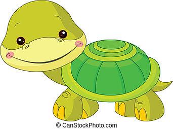 tengeri teknős, móka, zoo.