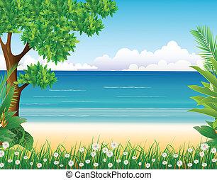 tengerpart, erdő, háttér