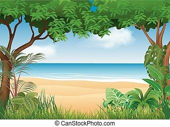 tengerpart, gyönyörű, tropikus