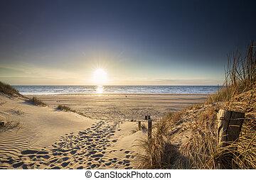 tengerpart, napfény, észak, út, tenger