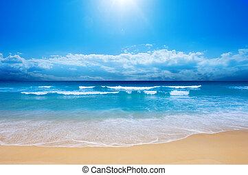 tengerpart, paradicsom