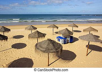 tengerpart, sunshades