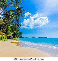 tengerpart, tenger, gyönyörű, tropikus