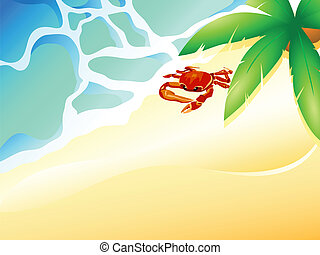 tengerpart, tengeri rák