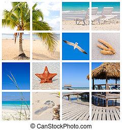 tengerpart, tropikus, kollázs