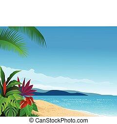 tengerpart, tropikus