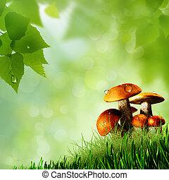 természetes, elvont, háttér, mushrooms.
