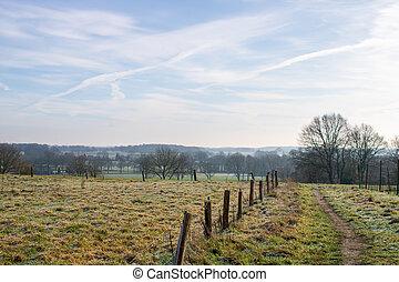 természetjárás, dombtető, város, trail., kilátás, morning., markelo, hideg, holland, tél
