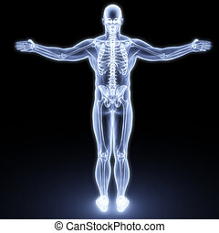 test, emberi