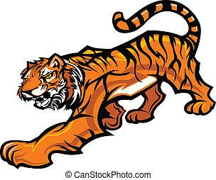 test, tiger, vektor, kabala, grafikus