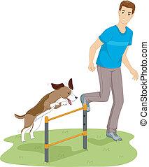 teszt, agilitás, kutya