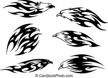 tetovál, fehér, repülés, fekete, sasok