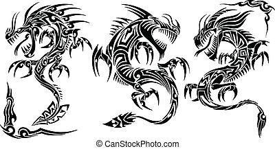 tetovál, törzsi, vektor, állhatatos, sárkány