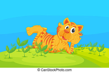 tiger, fekvő