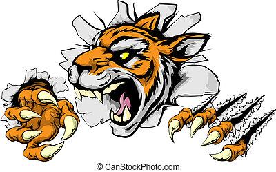tiger, mérges, sport, kabala