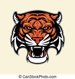 tigris fő, kabala