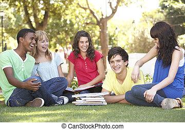 tizenéves, csoport, beszélgető, diákok, liget, együtt
