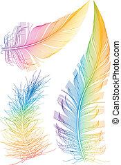 tollazat, vektor, színes