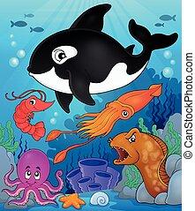 topic, 8, fauna, kép, óceán