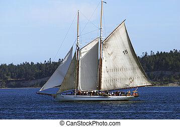 topsail, kétárbocos hajó, gaff, two-masted, adventuress