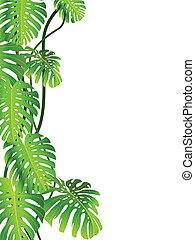 tropical berendezés, háttér