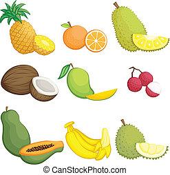 tropical gyümölcs, ikonok