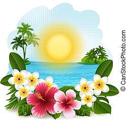 tropical parkosít