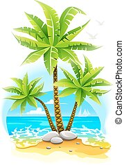tropical sziget, kókuszdió pálma, bitófák