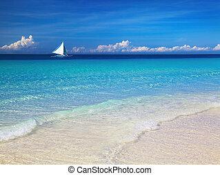 tropical tengerpart, fülöp-szigetek